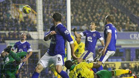 Norwich City's Sebastien Bassong's equaliser at Everton earlier in the season made it three score-dr