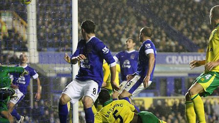 Sebastien Bassong snatches a last minute equaliser for Norwich City at Goodison Park in November.