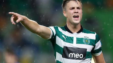 Ricky van Wolfswinkel is potentially one of the Canaries' most exciting signings for years.