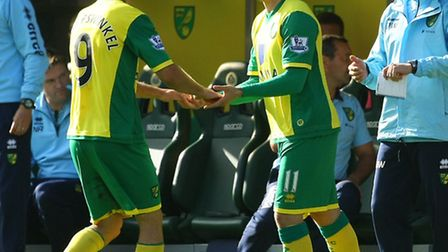 Norwich City boss Chris Hughton knows the difficulty of pairing Ricky van Wolfswinkel and Gary Hoope