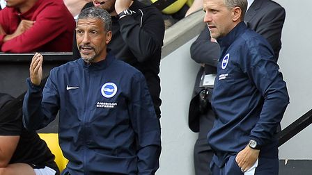 Brighton manager Chris Hughton and his assistant Paul Trollope on the sidelines during the 1-1 frien