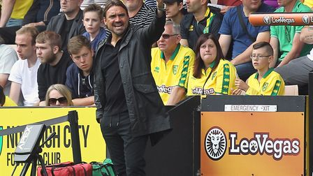 Norwich City head coach Daniel Farke takes on his first season in English football. Picture by Paul
