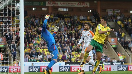 Nelson Oliveira sends Norwich City level against Hull - but that wasn't the best part of Saturday fo