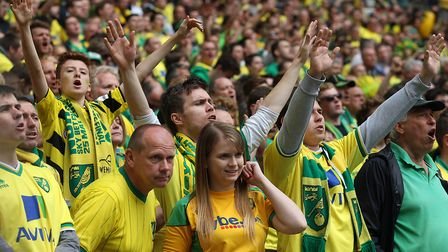 Yellow army. Picture: Paul Chesterton/Focus Images Ltd