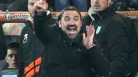 Daniel Farke gets his message across in Norwich City's 1-0 Championship win over Swansea City Pictur