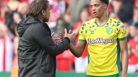 Daniel Farke had a consoling word for Jamal Lewis after Norwich City's 2-2 draw against Stoke City P