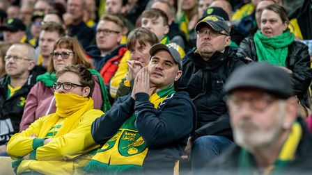 Canaries fan during the game against Sheffield Wednesday Picture: Matthew Usher/Focus Images Ltd