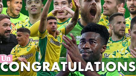 Norwich City are back in the Premier League after securing automatic promotion from the EFL Champion