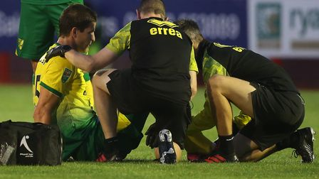 Timm Klose has confirmed he will be out for months with a knee ligament injury Picture: Paul Chester