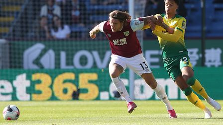 Norwich City left back Jamal Lewis could have a tricky customer to deal with in Crystal Palace dange