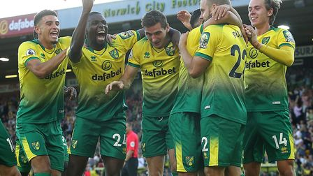 Norwich City's squad have embarked on a spell this month that could shape their Premier League prosp