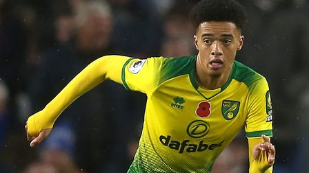 Jamal Lewis admits the Premier League has tested the Canaries Picture: Paul Chesterton/Focus Images