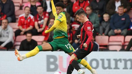 Jamal Lewis has returned to Norwich City and will miss Northern Ireland's game in Germany Picture: P