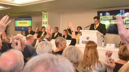 Stephan Phillips and Michael Wynn Jones were re-elected unopposed at Norwich City's 2019 AGM Picture