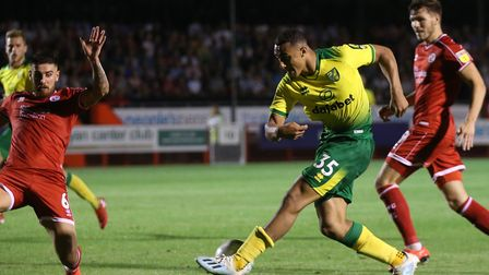 Adam Idah is in line for a second senior start for Norwich City in the FA Cup third round at Preston