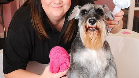 Emma Goffin is opening an independent dog grooming salon called Boo-Tique on Bridge Road. Emma pict