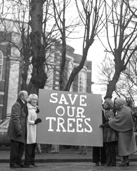 PROTEST: a campaign to save trees on St George's Plain from being felled in the late 1970s. Picture: