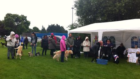 The Canine Partners dog show and fun day in Brandon.