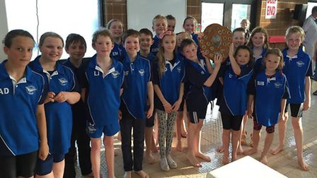 Thetford Dolphins Junior Swimmers competed at the Bussens & Parkin Novice Gala held at Mildenhall.