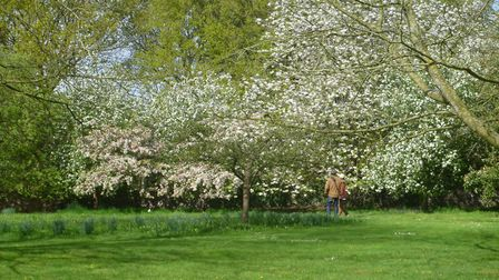 The open gardens event at Wretham Lodge. Picture: JOHN KITSON