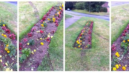 The damaged flowerbed in Belton.Picture: Dorothy Knight