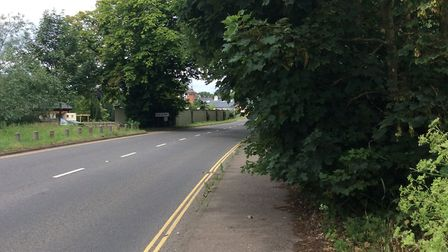 Reader Andrea Thompson is cross about the overgrown hedges pushing people onto the road in Rollesby.