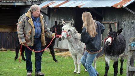 Trevor Austin and Kara Barber?'s three donkeys have been put on a strict post-Christmas diet after b