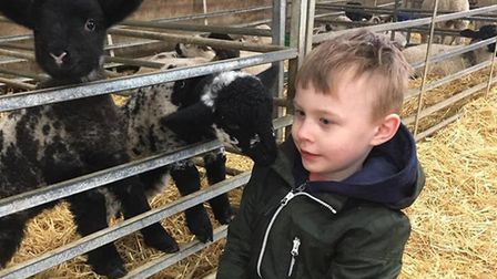 Lucas enjoys spending time visiting and petting animals when he isn't at school. Picture: Submitted