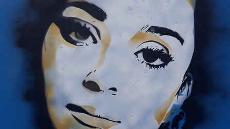 Anonymous street art that has appeared on hoardings around Great Yarmouth's Marina Centre is being h