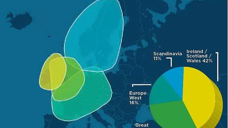 Alastair's DNA was analysed by AncestryDNA. The graphic show the geographical areas that make up his