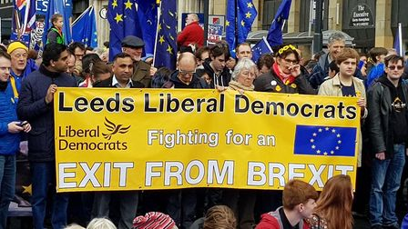 Great Northern March against Brexit in Leeds. Photograph: Anna Clark
