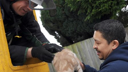 Paul Dunckley, of Pauls Tree Service, reunited Dwayne De'ath with his five-month-old cat Brooklyn, w