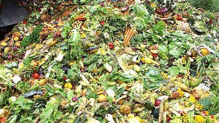 As much as half the world's food ends up being thrown away, say investigators.