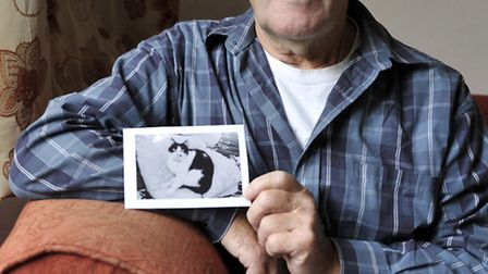 Brian Lloyd, of Ipswich, is upset after his seven year-old cat Maisie was shot with three pellets, o