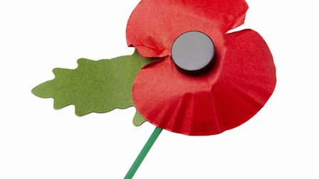 This year's poppy appeal is being launched at the weekend.