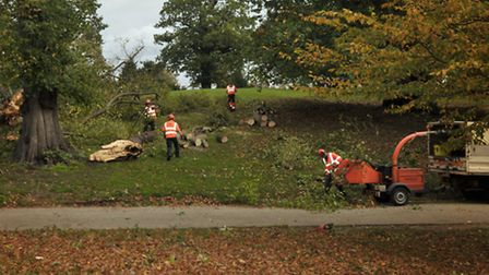 Broken branches have been cleared from Christchurch Park