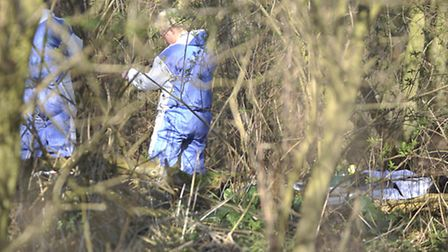 Police search teams scour woodland around Parklands in Ufford where part of a human bone was found.