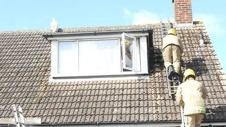 Firefighters climb onto the roof of a chalet bungalow in Priory Road, Felixstowe, to rescue West Hig