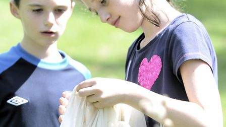 Shane, eight, and Ellen Shimmon, ten, look for bugs at the Wildlife Family Fun Day at Holywells Park