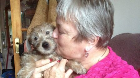 Sue Hall with one of her Irish Wheaten Terrier puppies