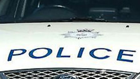 Police are looking for a man who exposed himself to a girl in Essex