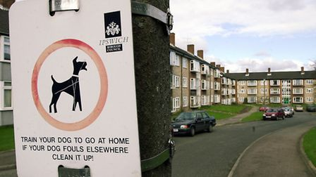 A reminder to dog owners in Jasmine Close, Ipswich.