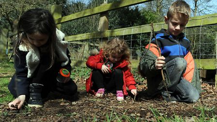 Easter holiday fun in Holywells Park in Ipswich. Children take part in a bug hunt. L-R: Emily Jolley