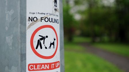 St Edmundsbury and Forest Heath councils have been urged to fine irresponsible dog owners for not pi