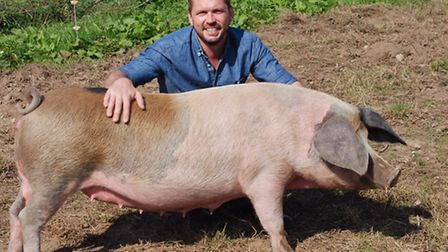 Patron of Pigs Gone Wild Jimmy Doherty