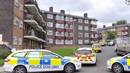 Armed police and dog units investigate the scene of an incident in Wellington Street, Ipswich.
