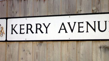 Kerry Avenue in Ipswich. Picture by Jerry Turner