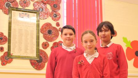 Pupils at Holbrook Primary School have created a beautiful poppy mural which was part of a project w