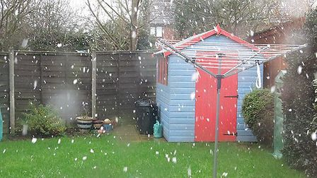 Snow has fallen in Bury St Edmunds today - photo by Tony Lilley