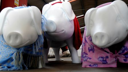 The pig sculptures in their new home waiting for the artists to paint them ready for Pigs Gone Wild